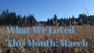 What We Loved This Month- March