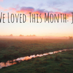 What We Loved This Month- June